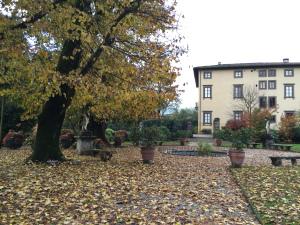 Giardinaggio a Villa Bernardini