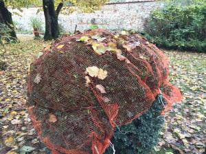 Villa Bernardini - Messa a dimora delle piante